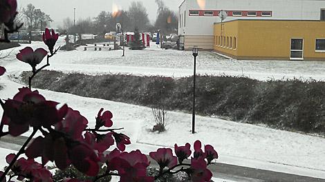 Auch in Naumburg hatten wir Schnee.